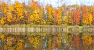 new_richmond_lake_fall
